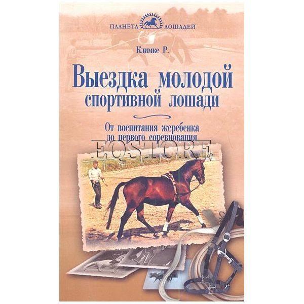 Выездка молодой спортивной лошади