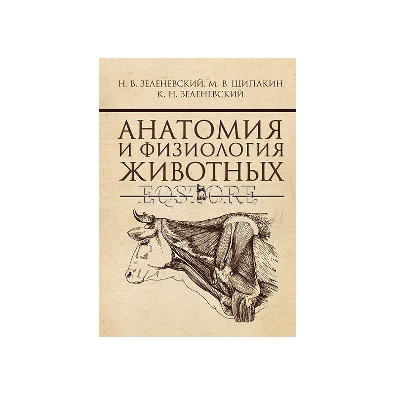 Анатомия и физиология животных
